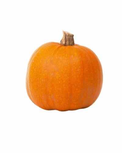 Red-Pumpkin