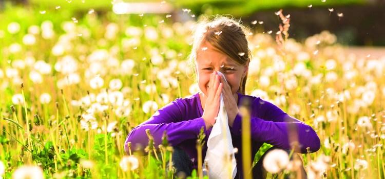 Allergie - Pollenzeit