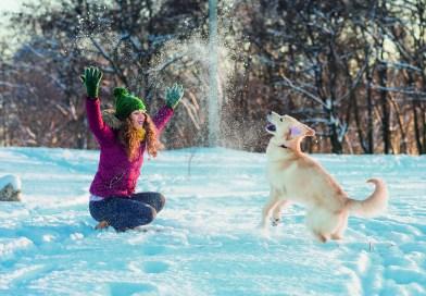 Zufriedenes Haustier – glücklicher Mensch