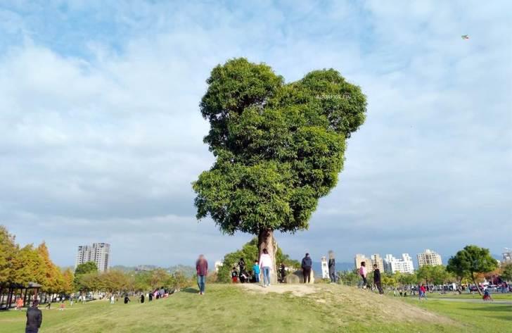 20210119084517 96 - 南興公園米奇樹。北屯萬坪親子公園,落羽松大道,台中網紅熱門拍照打卡景點