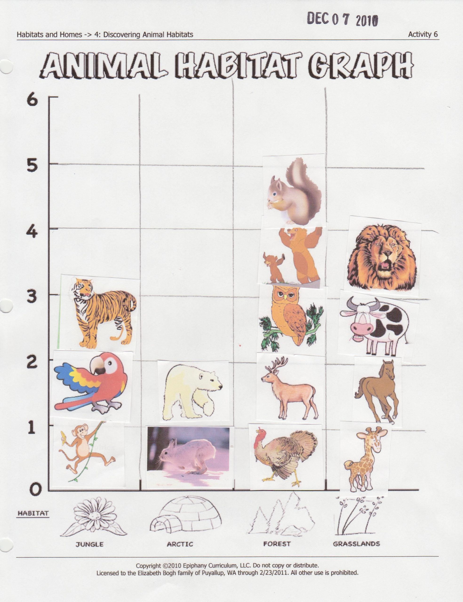 7 Animals Worksheets Preschool Activities