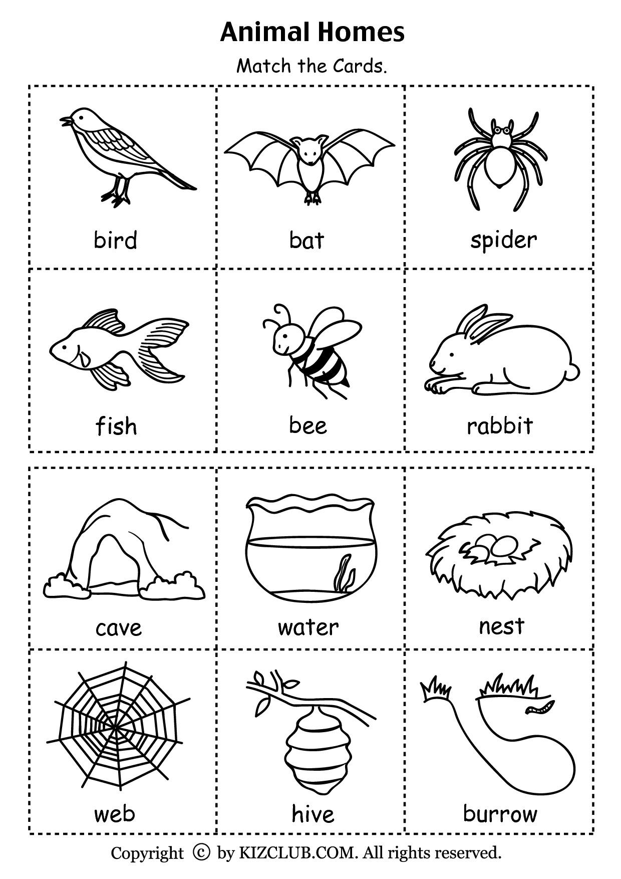 7 Farm Animals Worksheets Preschool