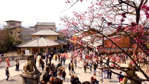 The view from Kiyomizu-dera