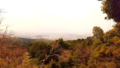 The view from near the top of Mt Inari
