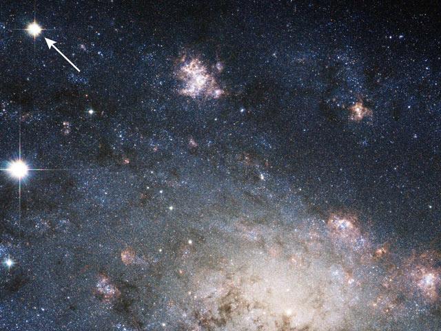 SN 2004dj in NGC 2403