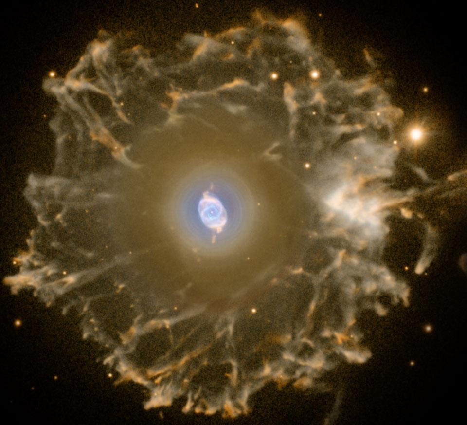 صور لنفس النجم عن بعد false color  وتظهر الوردة في الوسط حيث تتجلى ضخامة هذا الانفجار والذي سيعثر الكواكب ويفجر البحار وينسف الجبال، فيذرها قاعاا صفصفا