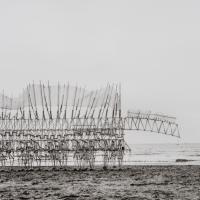 "Strandbeests: τα ""ζώα"" των παραλιών που τρέφονται με τον άνεμο"
