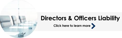 Director & Officers Header Image