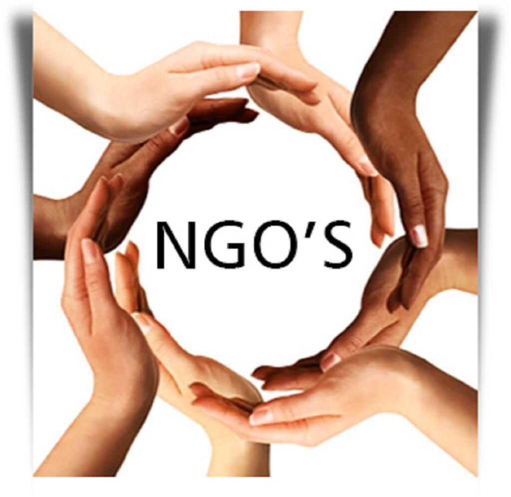 Moscow details subversive NGO activities in Russia and around the world