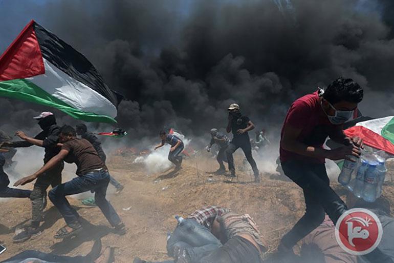 VN veroordeelt Israëls geweld in Gaza en wil bescherming voor Palestijnen – The Rights Forum
