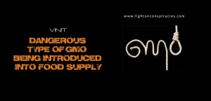 Dangerous Type of GMO Being Introduced Into Food Supply | Light On Conspiracies – Revealing the Agenda