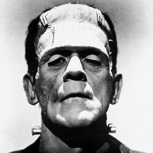 'Leitkultur' is bout die Monster van Frankenstein bijeenhoudt