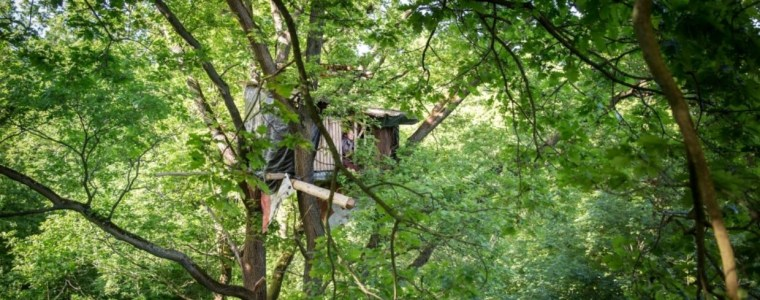 Hambach und die Kommission: Der Kampf um die Kohle
