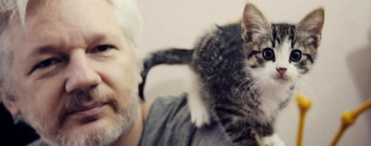 Assange wartet weiter auf Internetzugang