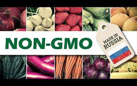 russia-says-no-to-gmo-becomes-worlds-biggest-exporter-of-non-gmo-food