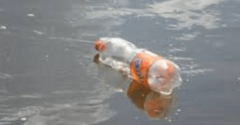 plastic-nanodeeltjes-nestelen-zich-snel-in-organen-zeedieren