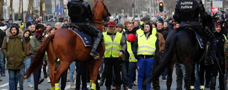 polizei-in-brussel-halt-gelbwesten-in-pferdestall-fest-angeblich-auf-geheis-des-burgermeisters