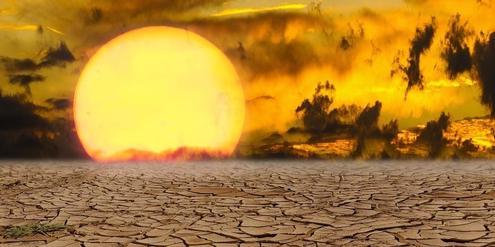 umweltanwalte-verklagen-franzosischen-staat