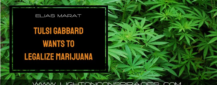 tulsi-gabbard-wants-to-legalize-marijuana-punish-big-pharma-and-end-private-prisons-light-on-conspiracies-8211-revealing-the-agenda