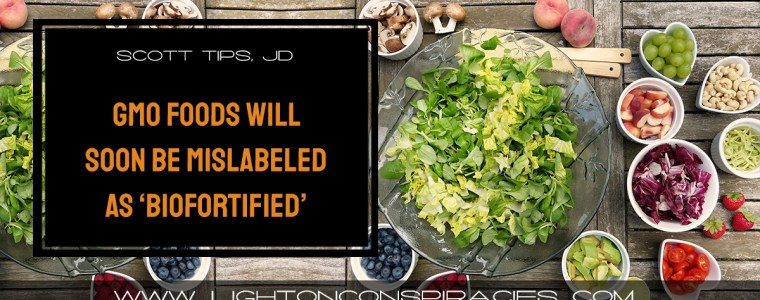 gmo-foods-will-soon-be-mislabeled-as-biofortified-light-on-conspiracies-8211-revealing-the-agenda