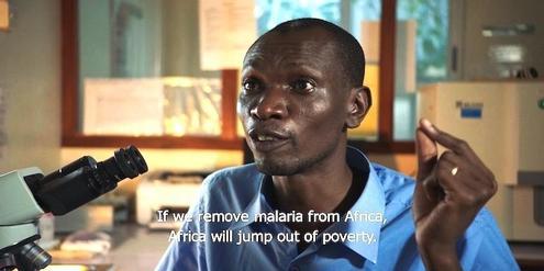 stiftung-bill-gates-behindert-pravention-gegen-malaria