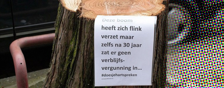 wat-is-de-verborgen-agenda-achter-de-massale-bomenkap?-–-ellaster