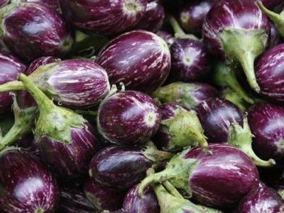 illegal-bt-brinjal-growing-in-india:-a-call-to-initiate-criminal-proceedings-against-regulators-and-corporations-|-asia-pacific-research