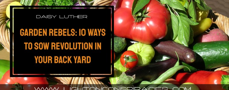 garden-rebels:-10-ways-to-sow-revolution-in-your-back-yard-|-light-on-conspiracies-–-revealing-the-agenda