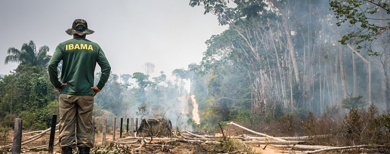report-shows-corporations-and-bolsonaro-teaming-up-to-destroy-the-amazon-–-global-research