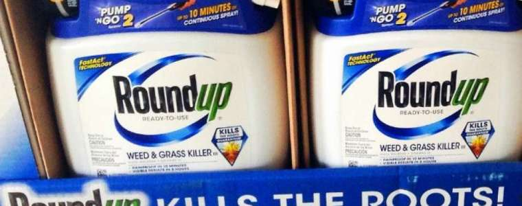 because-'a-world-without-insects-is-not-worth-living-in,'-germany-announces-plan-to-ban-glyphosate-–-global-research