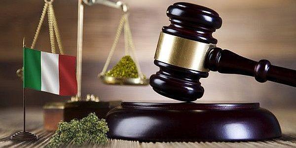 italien-gerichtsbeschluss:-der-eigenanbau-von-cannabis-fur-personlichen-gebrauch-ist-jetzt-legal