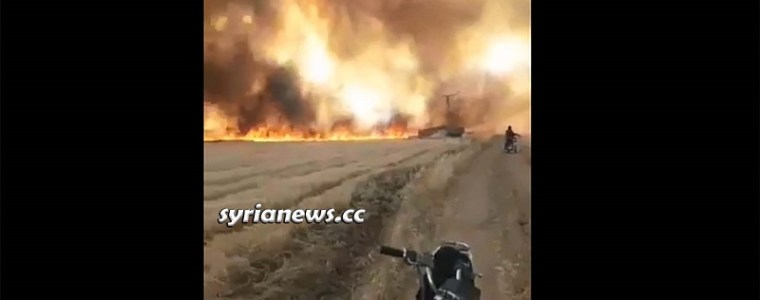 hearing-is-not-like-seeing:-nato's-terrorists-burning-syrian-wheat-crops-–-video