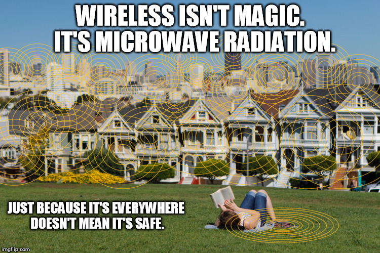 nigerian-scientist-publishes-research-reaffirming-harm-from-wi-fi-radiation-exposure-–-activist-post