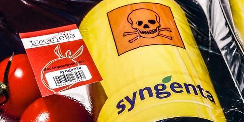 eu-exportschlager-gift:-syngenta-ist-nummer-eins