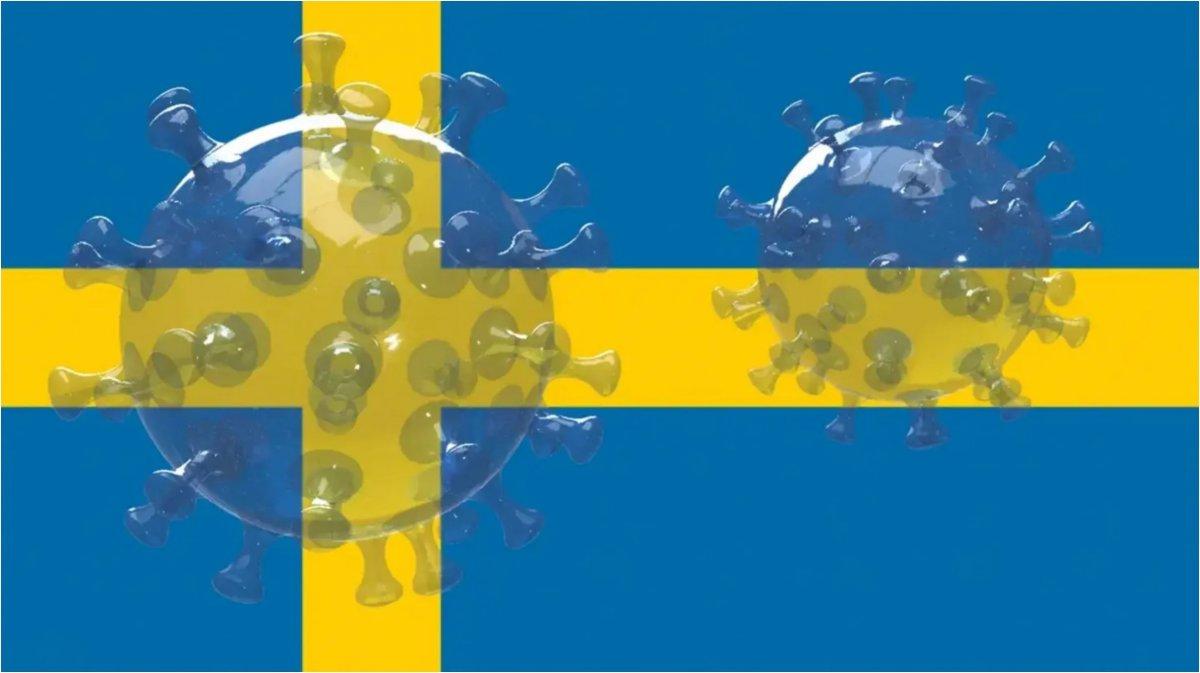 schwedens-beneidenswerte-lage-im-anti-corona-kampf