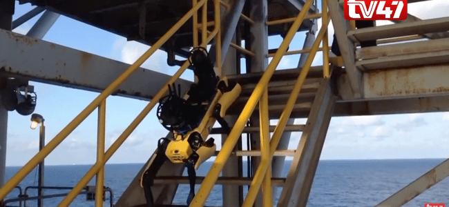 boston-dynamics'-robot-dog-starts-new-work-on-bp-oil-rig