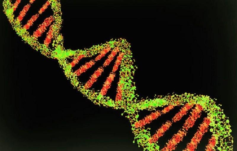 """arts-met-biowapenexpertise-noemt-covid-19-injecties-""""bewapende-medicijnen""""-–-frontnieuws"""