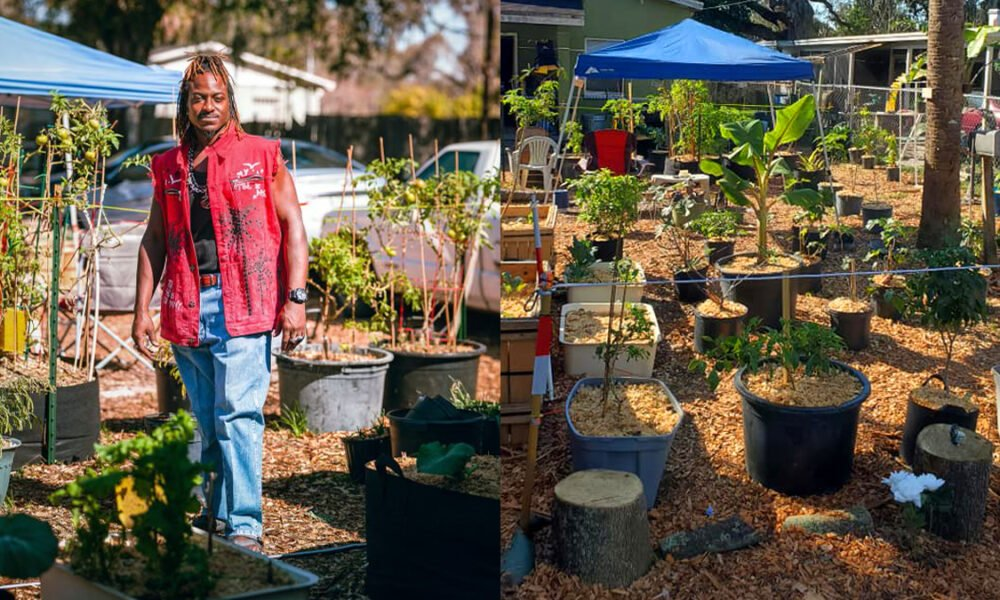florida-man-uses-stimulus-check-to-start-thriving-home-garden-to-feed-his-community