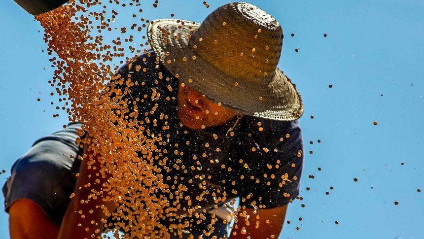 global-food-prices-post-biggest-jump-in-decade-–-popularresistance.org