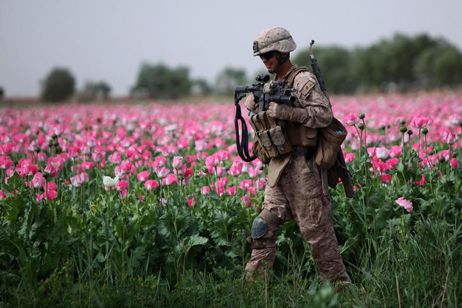 """de-oorlog-in-afghanistan:-de-echte-""""misdaad-van-de-eeuw""""-achter-de-opioidencrisis"""