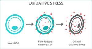 stressreactie-veroorzaakt-door-de-draadloze-communicatie.