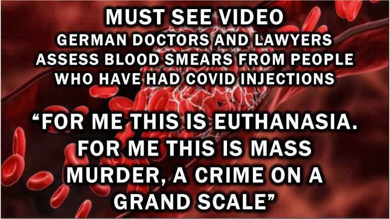 """duitse-artsen-en-advocaten-beoordelen-bloeduitstrijkjes-van-mensen-die-covid-injecties-hebben-gehad:-""""voor-mij-is-dit-euthanasie.-voor-mij-is-dit-massamoord,-een-misdaad-op-grote-schaal"""""""