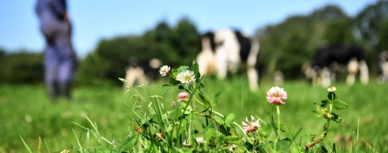 """totale-krankzinnigheid:-nederlands-kabinet-wil-boerderijen-afpakken-van-boeren-om-""""opwarming-van-de-aarde-tegen-te-gaan"""""""