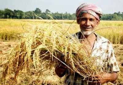 agrifood-conglomeraten:-verpletter-de-hoofden-van-india's-boeren:-een-wereldwijde-strijd-tegen-tirannie
