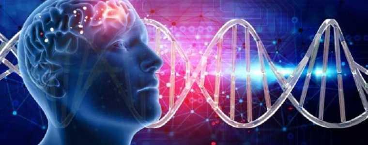 """""""onze-soort-wordt-genetisch-gemodificeerd"""":-wat-is-er-gebeurd-in-2020-21.-de-""""pandemie"""""""