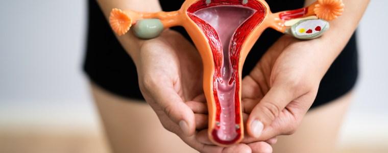 onze-vruchtbaarheid-loopt-gevaar-–-steeds-meer-meldingen-van-menstruatiestoornissen-en-miskramen