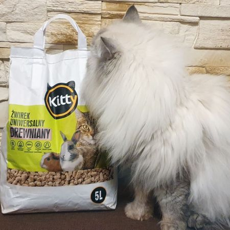 Review: Kitty wooden cat litter