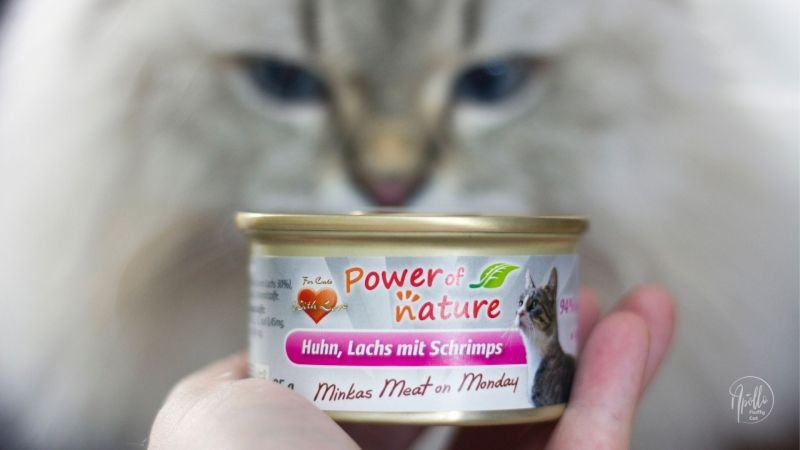 Review: Power of Nature Minkas Meat on Monday wet cat food