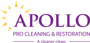 Apollo Pro Cleaning logo