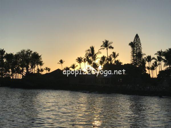 60代夫婦ハワイ旅行キングカメハメハ
